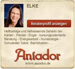 Aniador Gratisgespräch für Neukunden!